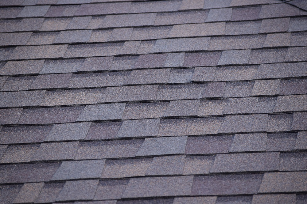 slate roof repair and build in Faringdon
